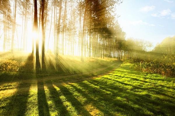Podobenství o modlitbě, pokání a o zázracích, které činí Bůh