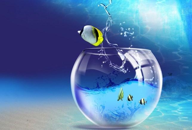 Cieľ duchovného rozvoja – postrehy a pochopenia