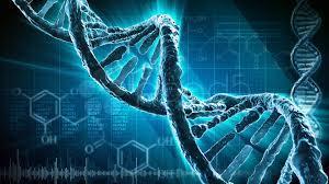 POKUSY S DNA OBJEVILY JEJÍ SKUTEČNOU SCHOPNOST