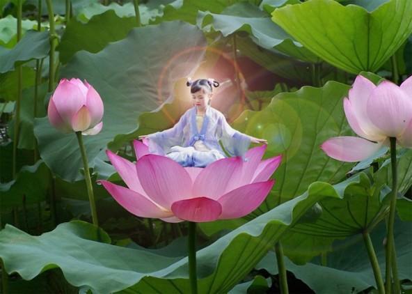 cvetok-lotosa_1